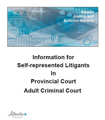 Standing up for themselves: self-represented litigants